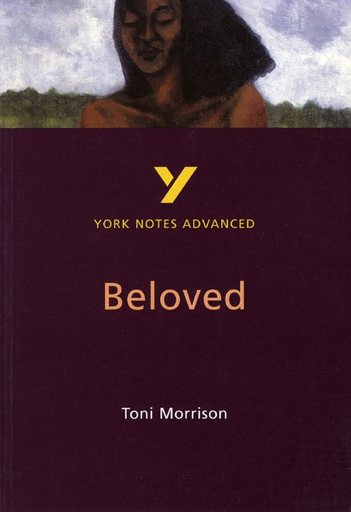 literary analaysis of the song of solomon by toni morrison